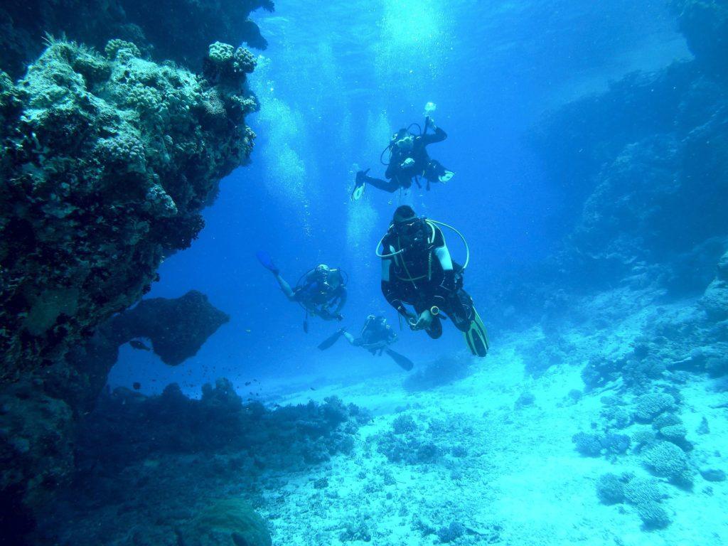 Tauchen in den Florida Keys